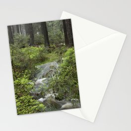 Mountains, forest, water. Stationery Cards