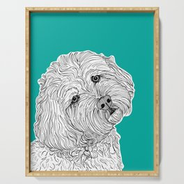 Cockapoo Dog Portrait ( teal background ) Serving Tray