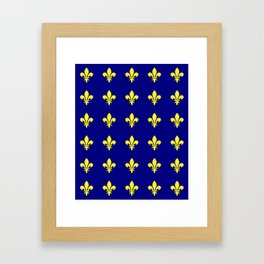 Fleur de lys 1-lis,lily,monarchy,king,queen,monarquia. Framed Art Print