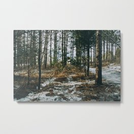 Sunlight through the forest Metal Print