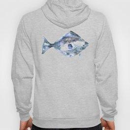 Flat Fish Watercolor Hoody