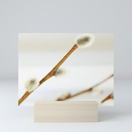 Willow branch with catkins Mini Art Print