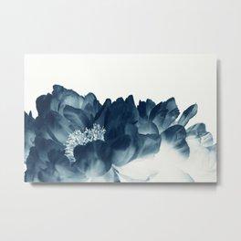 Blue Paeonia #1 Metal Print
