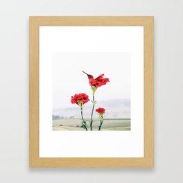 Carnation (r)evolution Framed Art Print
