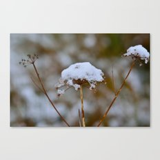 Snow Fall Canvas Print