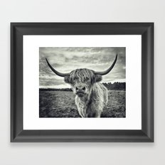 Highland Cow II Framed Art Print