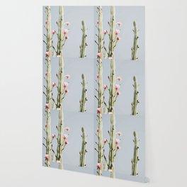 Cereus Cactus Blush Wallpaper