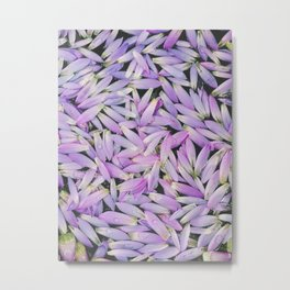 Purple Petal Pattern, Mirissa, Sri Lanka Metal Print