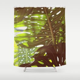 Let Light In Shower Curtain