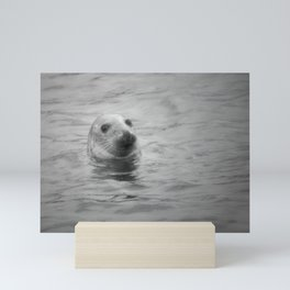 seal in the sea Mini Art Print