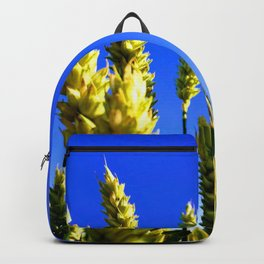 On the field Backpack