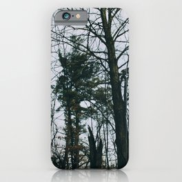 Colorless forest iPhone Case