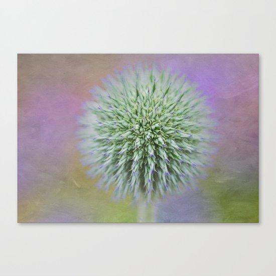 Purple Haze Canvas Print