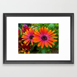 Two red flowers with added texture. Framed Art Print