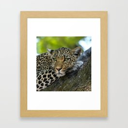 Aqua_Leopard_20180101_by_JAMColorsSpecial Framed Art Print