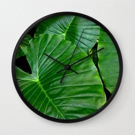 Zoo. Wall Clock