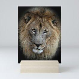 Sweet Male Lion Mini Art Print