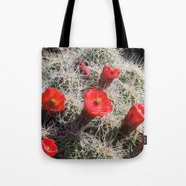 A Hedgehog Cactus Looks Sunward Tote Bag