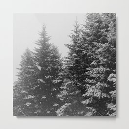 The Pine Tree Forest (Black and White) Metal Print
