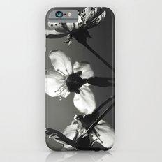 monochrome spring Slim Case iPhone 6s