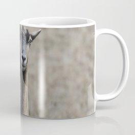 Black Goat and Barbados Blackbelly Sheep, No. 1 Coffee Mug