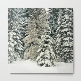 Warm Inside Metal Print