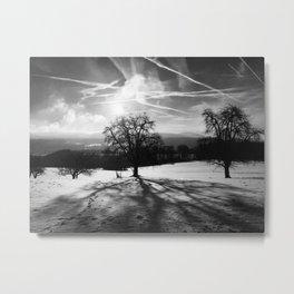 Brittle Winter Metal Print