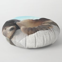 Sea lions family sleeping together on beach Floor Pillow
