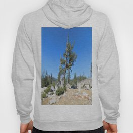 road trip, non typical tree, forked tree, back growth Hoody