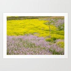 Spring flowers. Magic fields Art Print