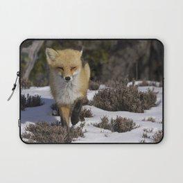 Red Fox on Snowy Beach Laptop Sleeve