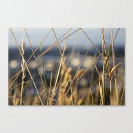 It's a grass life Canvas Print