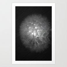 dandylion dreams Art Print