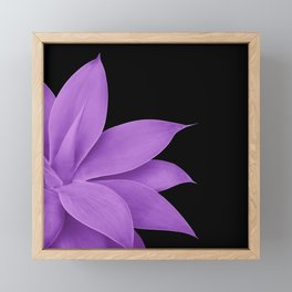 Agave Finesse #10 - Purple on Black #tropical #decor #art #society6 Framed Mini Art Print