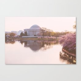 a softer side of washington, iii Canvas Print