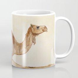 Dromedary Watercolor Coffee Mug
