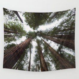 Redwood Portal - nature photography Wall Tapestry