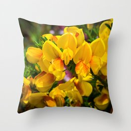 Scotch Broom Throw Pillow