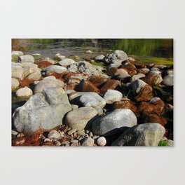 Rusty Moss Canvas Print