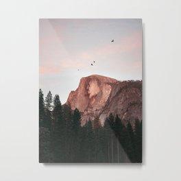 Yosemite Mountain Birds Half Dome Metal Print
