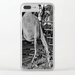 Giants Clear iPhone Case