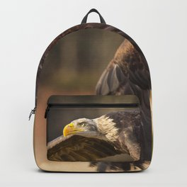 Bald Eagle in Flight Backpack