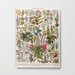 Adolphe Millot - Plantes Medicinales A - French vintage poster Metal Print