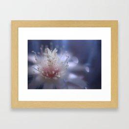 dreaming cactus Framed Art Print
