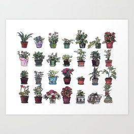 Beesly Botanicals Art Print