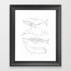 whale, i love you Framed Art Print