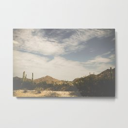 Sonora Metal Print