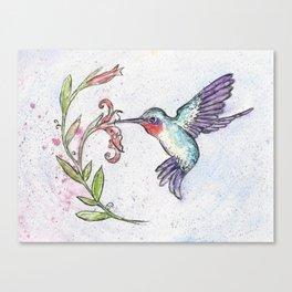 Winsome Hummingbird Canvas Print