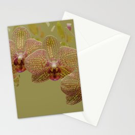 Orchid Spray Stationery Cards