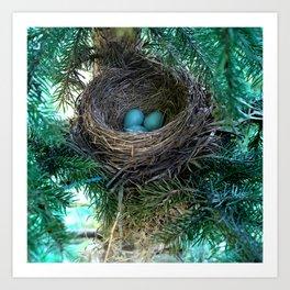 Robins Nest Art Print